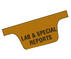 Chart Divider Tab - Lab & Special Reports - Paper - Bottom
