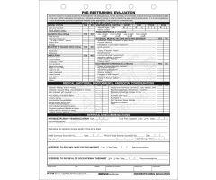 Pre Restraining Assessment CFS3-1HF